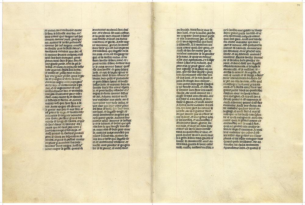 MS M 1044, fols  33v–34r   Livre de la chasse   The Morgan Library