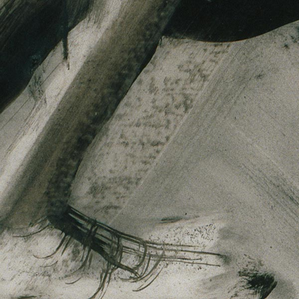 Detail of Glyptotek Drawing [9] showing texture from directly applied charcoal on the left, in contrast to the manipulated tonal area on the right.