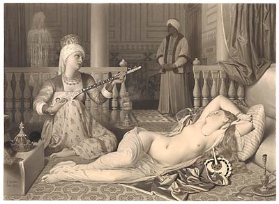 Fig. 3. In the lower right, Ingres used white chalk to enhance his depiction of feathers. Jean-Auguste-Dominique Ingres. Odalisque and Slave, 1839. Thaw Collection.