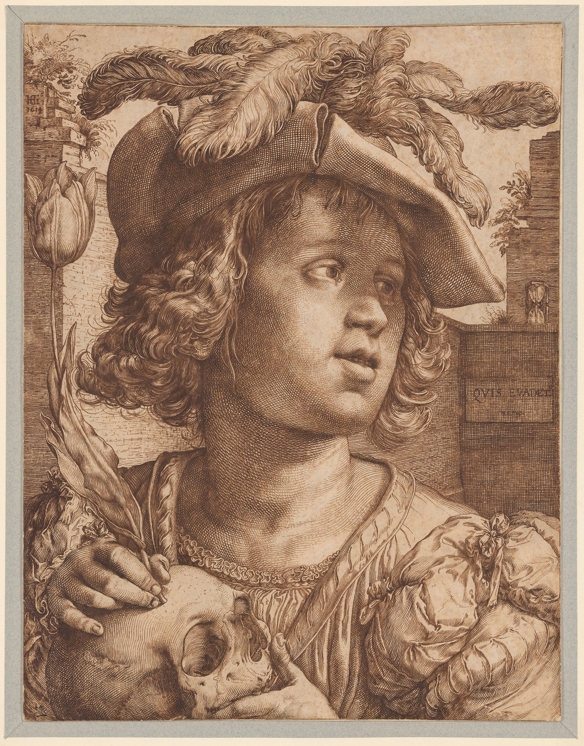 Hendrik Goltzius Young Man Holding A Skull And A Tulip Drawings Online The Morgan Library