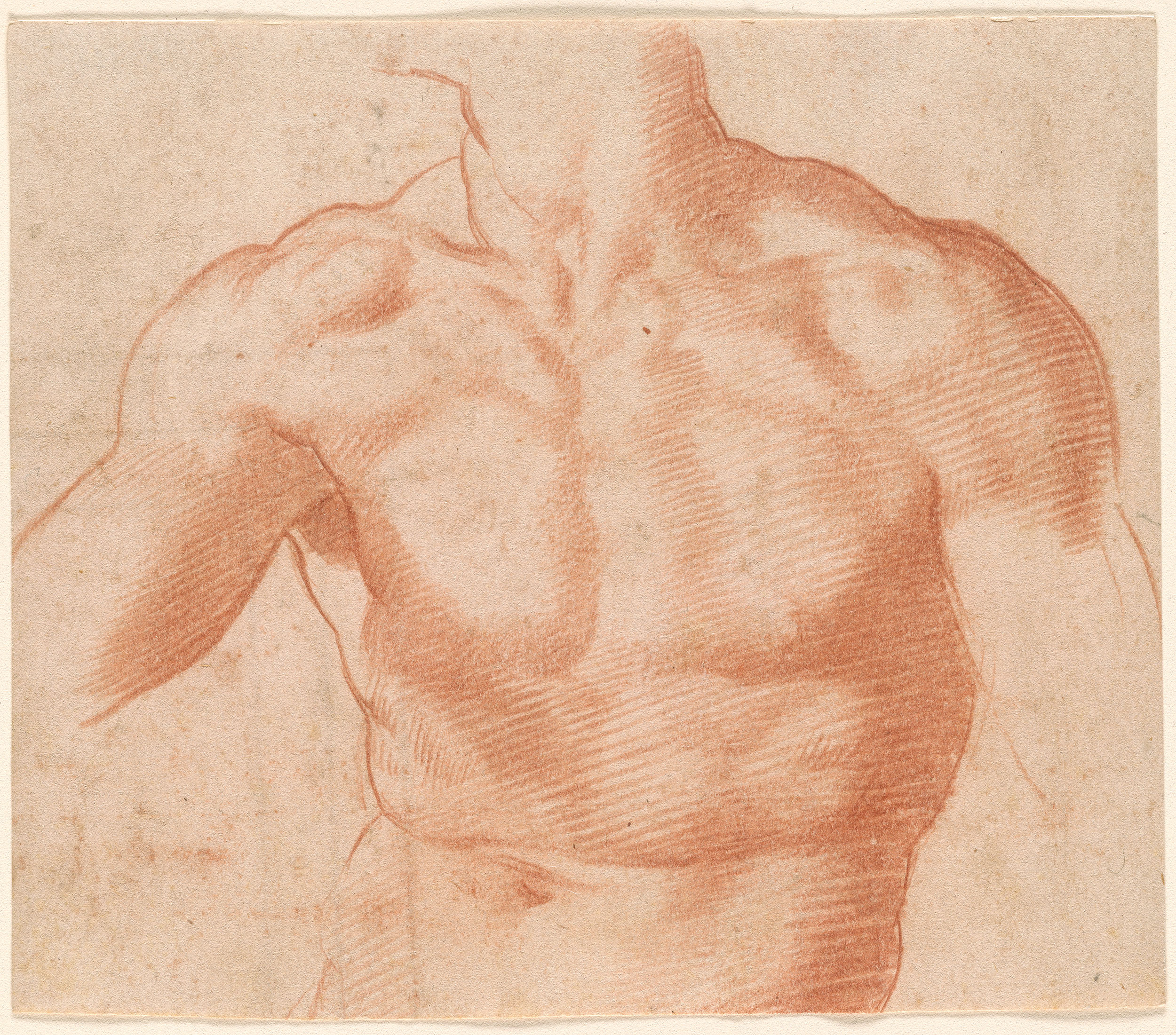 Francesco Salviati Drawings 217583v_0001.jpg
