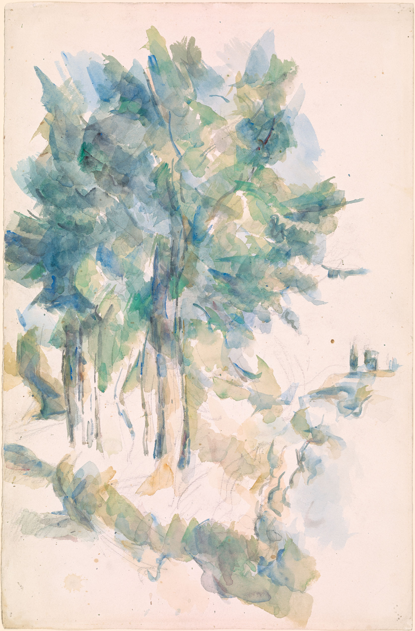 Paul C 233 Zanne Trees Drawings Online The Morgan