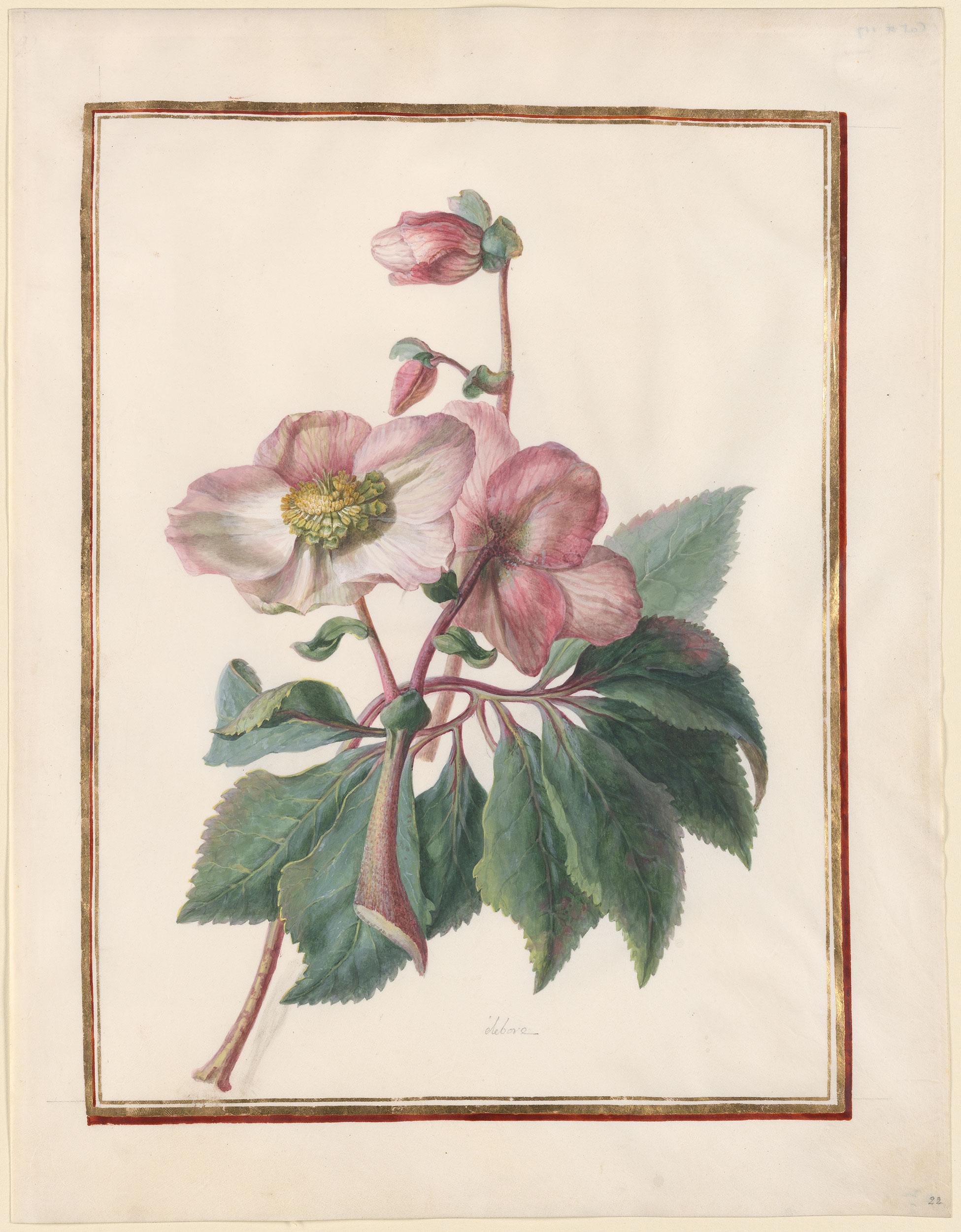 Sebra Blossom Tour de lit matelass/é Rose
