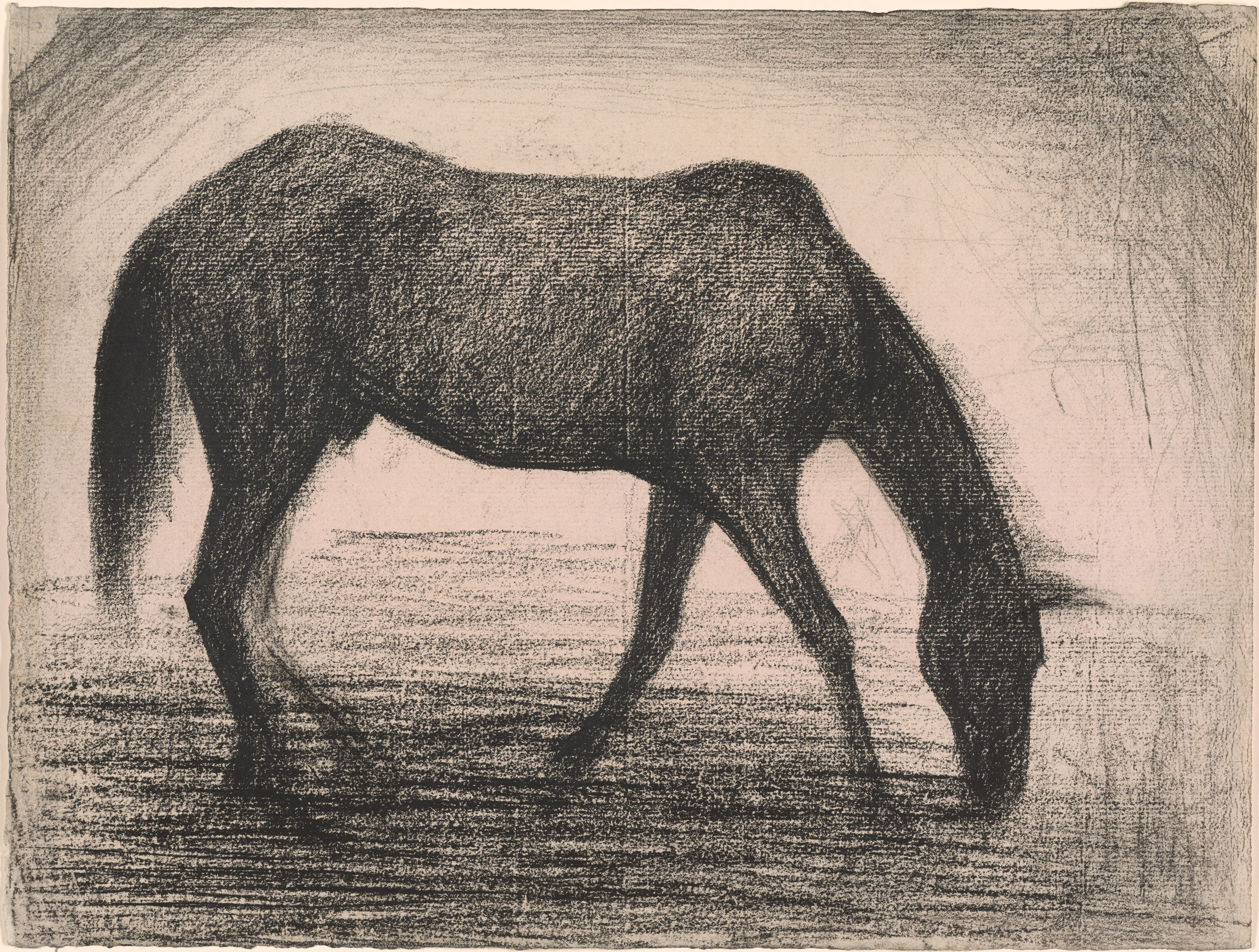 Georges Seurat The Black Horse Drawings Online The