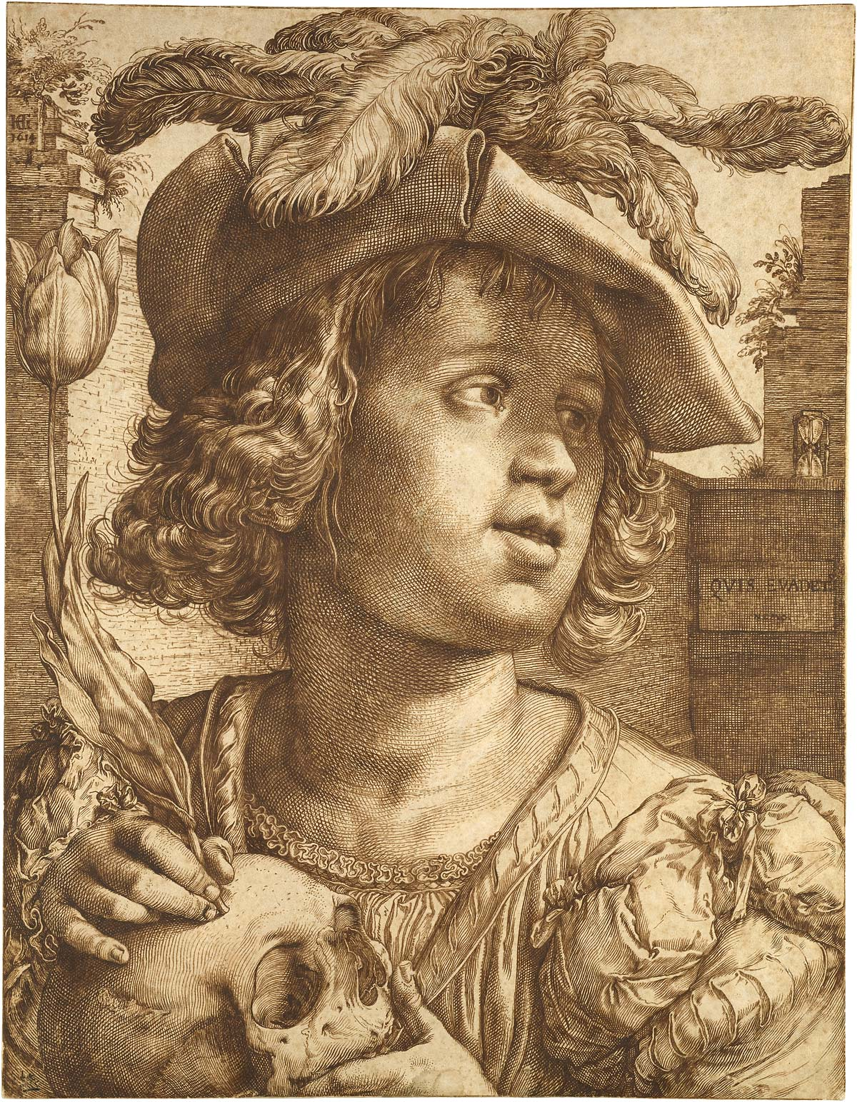 Image of Goltzius drawing