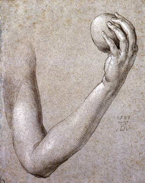 Image of Albrecht Dürer drawing
