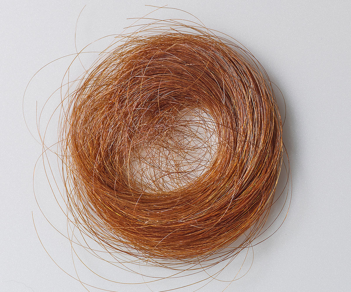 Photo of lock of Emily Dickinson's hair