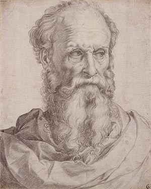 Image of Head and Shoulders of a Bearded Man