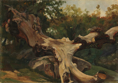 Image of Uprooted Tree by Gazeau