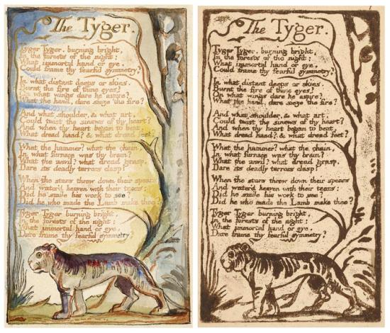 a wealth of imagery in the tyger by william blake What could a tiger and a lamb possibly have in common in this lesson, we'll examine the relationship between william blake's poems 'the tyger' and.