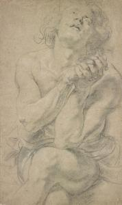 Image of Rubens drawing